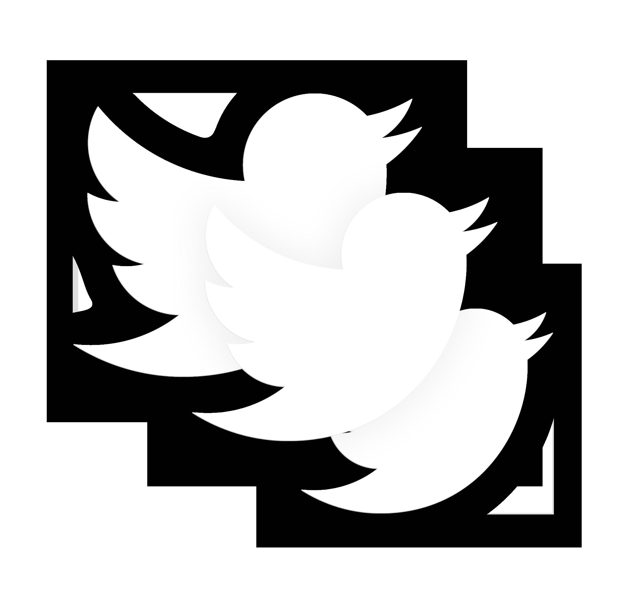 Twitter gestione social media marketing